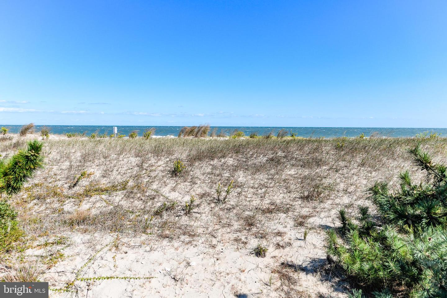DESU149860-302120927486-2019-10-17-18-04-16 1203 Bunting Ave | Fenwick Island, De Real Estate For Sale | MLS# Desu149860  - Suzanne Macnab